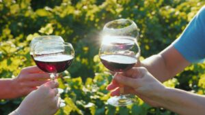 New Jersey Wine tours
